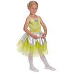 DELUXE Tinkerbell Fairy Dress Up Costume
