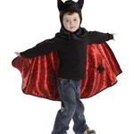 Reversible Spider and Bat Cape with Hood