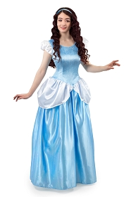 Adult Cinderella Dress
