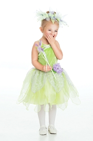 Tinkerbell Dress-Up Costume