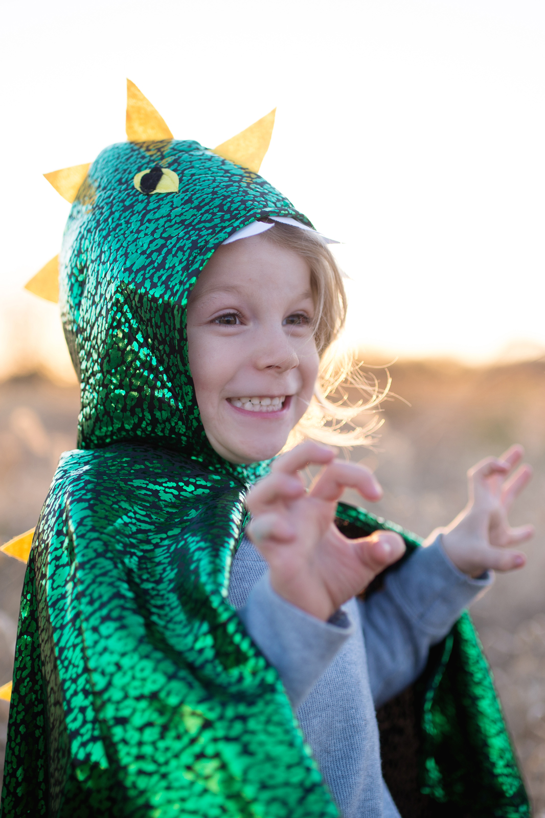 Boys Toddler Dragon Cape Costume With Attached Hood