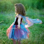 Blue and Burgundy Fairy Blossom Dress