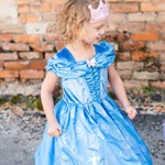 Butterfly Cinderella Dress